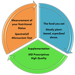 Our nutrition program is focused on three major areas as shown in the diagram below: